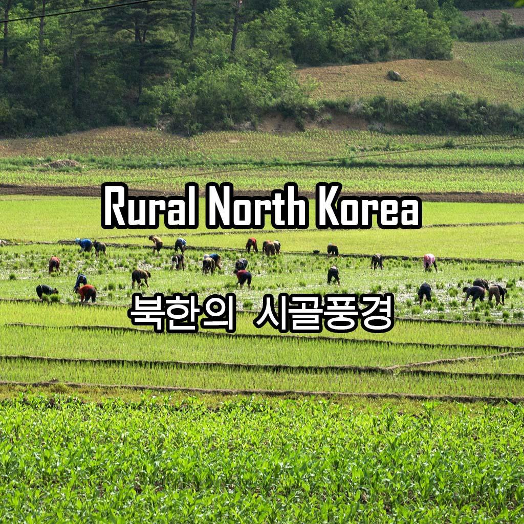 Rural North Korea 북한의 시골풍경